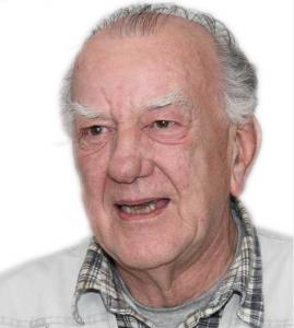 Albert Bloeming